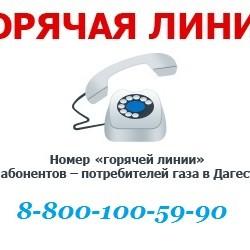Картинка ГОРЯЧАЯ ЛИНИЯ 8 800 100 59 90